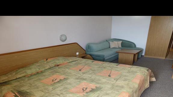 Pokój w hotelu Hrizantema