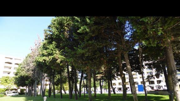 Ogród  w hotelu Sol Nessebar Bay Mare