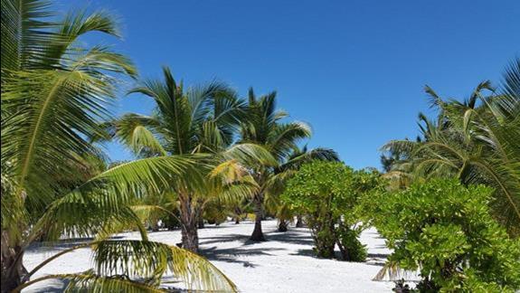 plaża 3