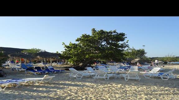 Playa Pesquero - plaża