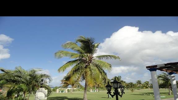 Playa Pesquero - teren pomiędzy plażą a barem La Pipa