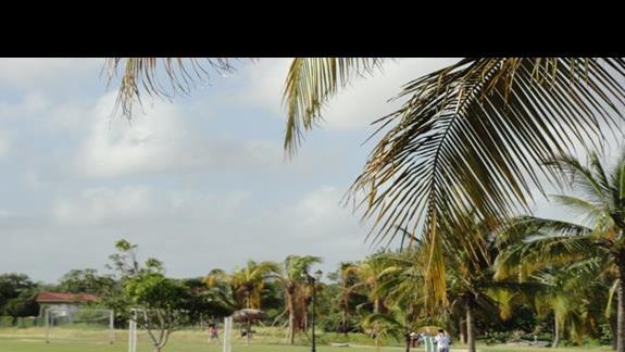 Playa Pesquero - boisko
