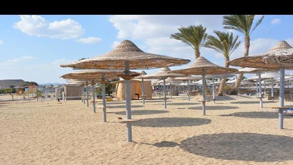 Plaża hotelu El Malikia Resort Abu Dabbab