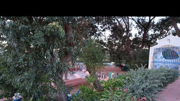 Ogród w hotelu Agador Caribbean Village
