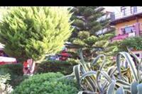 Alanya - Bujna roślinnośc Alanyi