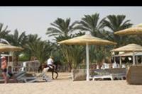Hurghada - plaza i konie