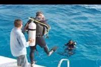 Makadi Bay - Nauka nurkowania