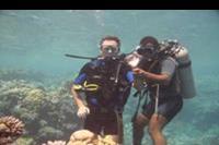 Makadi Bay - Pod wodą przy rafach