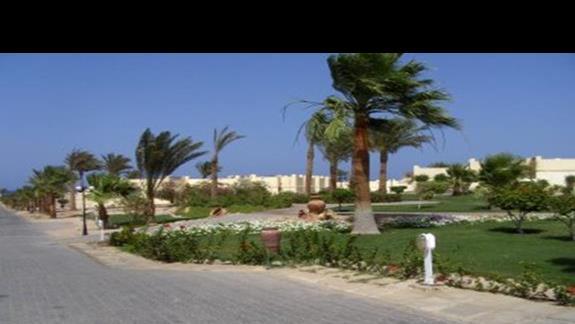 droga na plaze obok budynków i ogrodu