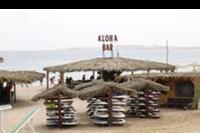 Hotel Magawish Village Resort - Bar i szkólka surfingowa