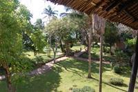 Hotel Baobab Beach Resort & Spa - Widok z pokoju