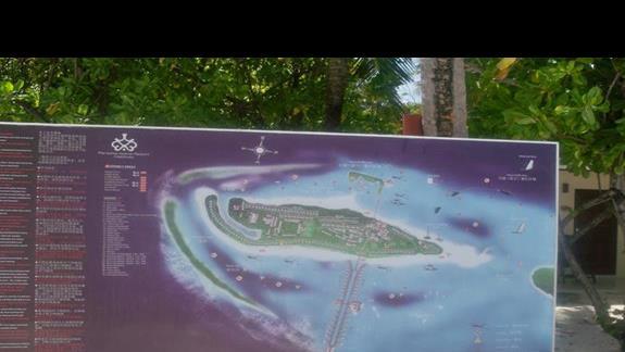 Tak wygląda  wyspa Paradise na kolorowej planszy