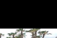 Hotel Carolina Mare - widok z recepcji