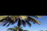 Hotel Holiday Beach Club - Bardzo zadbany teren hotelowy