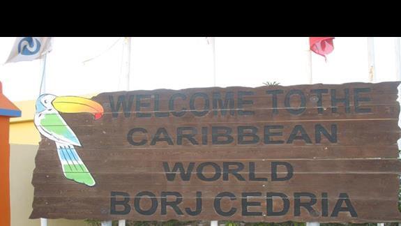 Caribbean world