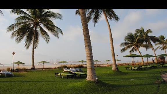 miejsce do opalania przy plazy