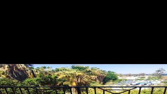 Taras w pokoju standardowym w hotelu Apollon
