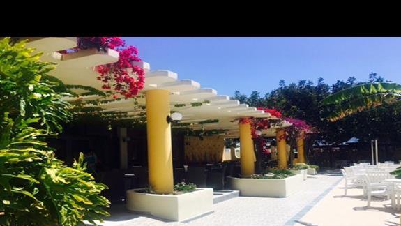 Teren hotelu Apollon
