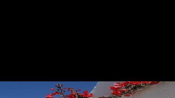 Creta Maris Beach Resort teren