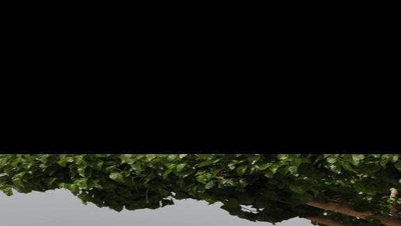 Kipriotis Panorama & Suites - teren przy basenie