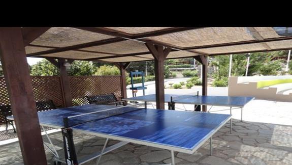 Porto Angeli - tenis stołowy