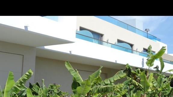 Porto Angeli - bujna roślinność