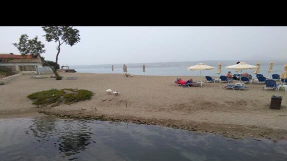 PLAZA KALYVES BEACH