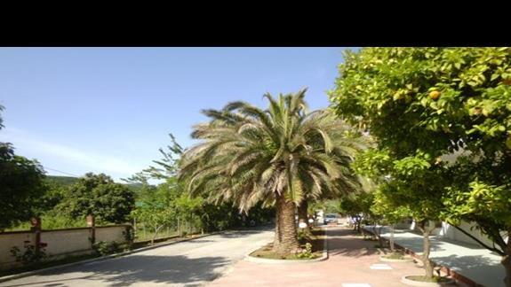teren hotelowy Sun Beach
