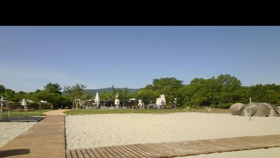 widok z plaży na bar przy basenie Sun Beach
