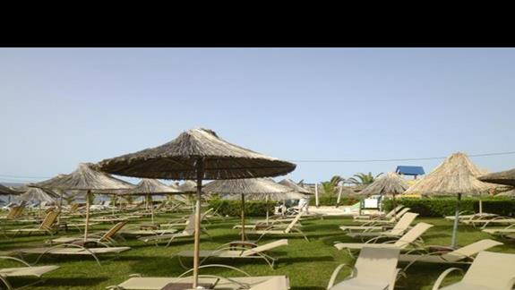 ogród w hotelu Sissi Bay
