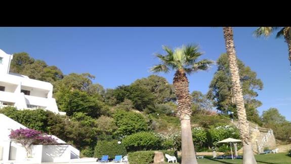 ogród w Istron Bay