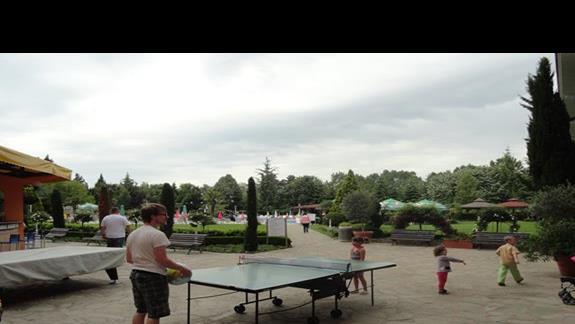 Hotel Hrizantem - stół do ping ponga