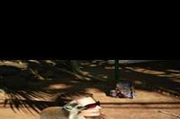 Hotel SBH Club Paraiso Playa - Lemur experience