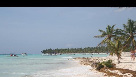 Wyspa Saona
