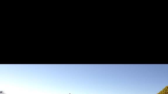 basen obok restauracji