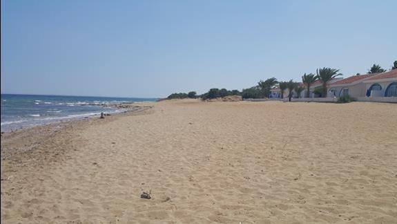 Plaża ⛱