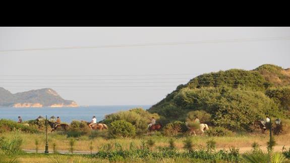 widok z balkonu hotelu Caretta Island