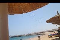 Hotel Albatros Beach Resort - Plaża, morze, ptaki, spokój, cisza.... Czego więcej chcieć?