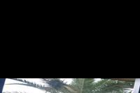 Hotel SBH Club Paraiso Playa - widok z pokoju