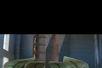 Hotel Regnum Carya Golf & Spa Resort - recepcja