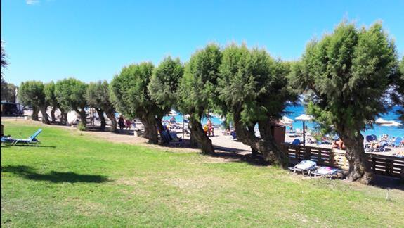 widok na hotelową plażę