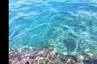 Hotel Turunc - Czysta woda w morzu, można oglądać pływające rybki :)