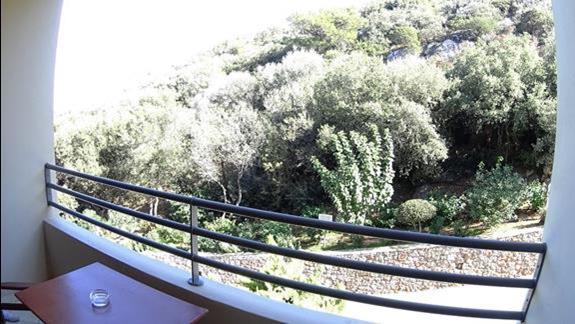 widok na ląd z balkonu p. standard   w h. Blue Marine Resort &SPA