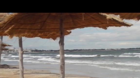 plaża  przy hotelu sun club