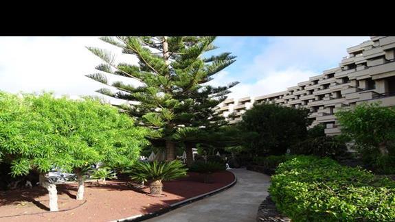 Ogród hotelu Occidental