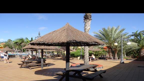 Teren hotelu ALoe Club