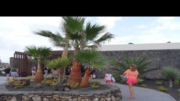 Wejście do budynku głównego Origo Mare Village Club