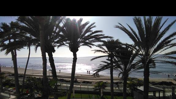 Widok na ocean z pokokju superior, Ifa Faro