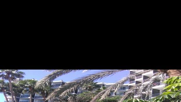 Teren zielony, Beverly Park