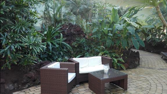 Palmiarnia w hotelu R2 Rio Calma